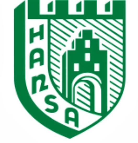 Logo SV Hansa Freysothe