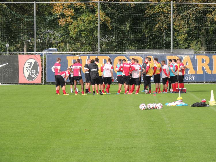 Sc Freiburg öffentliches Training